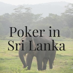 Poker in Sri Lanka: All You Need to Know