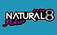 natural8logo-min