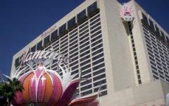 flamingo-hotel-casino-vegas
