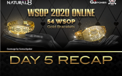 Wsop Day 5 Recap 240x150