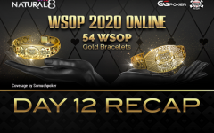 Wsop Day12 Recap 240x150