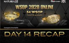 Wsop Day14 Recap 240x150