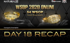 Wsop Day18 Recap 240x150