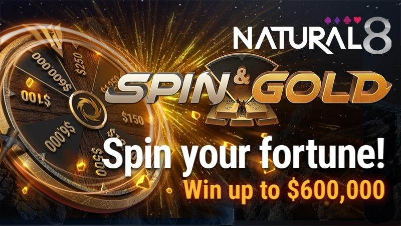 Spin N Go Natty8