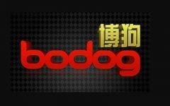 Bodog88 240x150