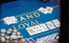 Apl Grand Loyal 240x150
